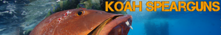 Koah Spearguns - Extreme quality, extreme accuracy